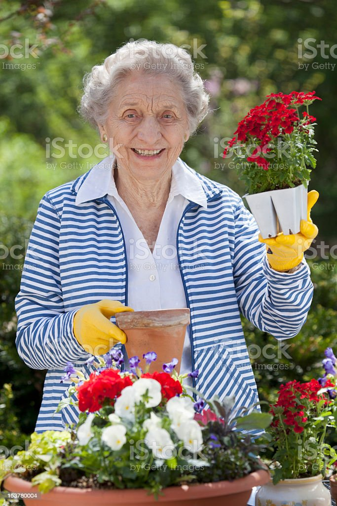 Smiling Senior Woman Holding Flowers royalty-free stock photo