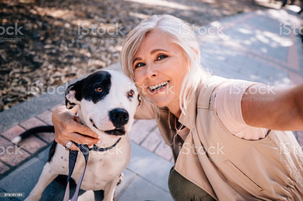 Smiling senior woman taking selfies with pet dog in park stock photo