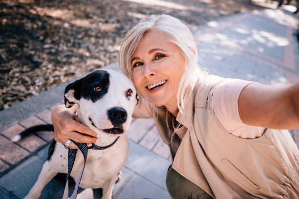 smiling senior woman taking selfies with pet dog in park - selfie foto e immagini stock