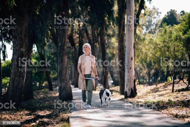 Smiling senior woman walking with pet dog in park picture id979306236?b=1&k=6&m=979306236&s=612x612&h=y1kokawyjqrupidm8kutmkegp2xzqmxmrfmz3t4ony0=