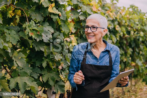 1063236916 istock photo Smiling senior woman with a tablet in a vineyard 1063236002