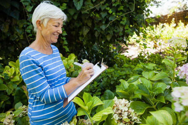 Smiling senior woman writing on clipboard while standing amidst plants Side view of smiling senior woman writing on clipboard while standing amidst plants at backyard amidst stock pictures, royalty-free photos & images