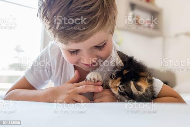 Smiling small boy playing with his kitten picture id604333508?b=1&k=6&m=604333508&s=612x612&h=39kd1qpryhjq5napmg5jvxdsaftluiys9kvsg2eit2a=