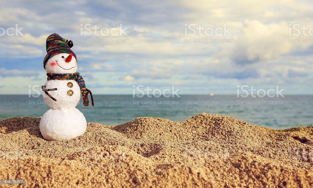 Smiling snowman on the sea beach stock photo