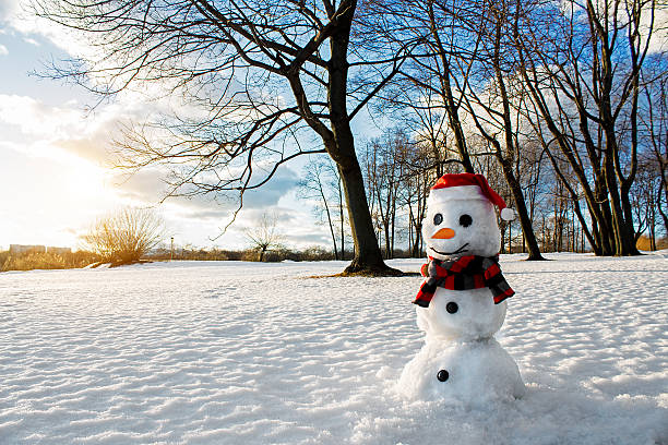 smiling snowman. picturesque winter landscape. holiday mood. - welcome march stock photos and pictures