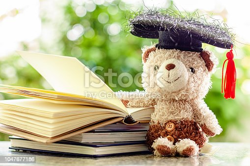 153178960istockphoto Smiling teddy bear doll with square academic cap and stack of opened books against blurred natural green background for education concept 1047677186