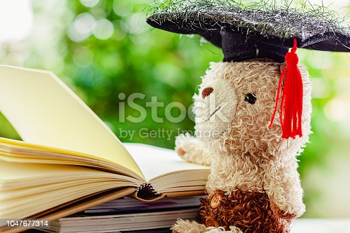 153178960istockphoto Smiling teddy bear doll with square academic cap and stack of opened books against blurred natural green background for education concept 1047677314