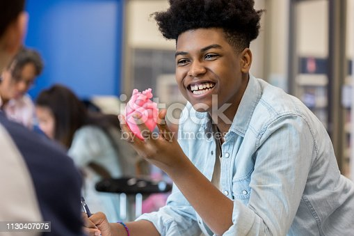 Confident African American teenage boy smiles while discussing the human heart with a classmate. He is holding a human heart model.