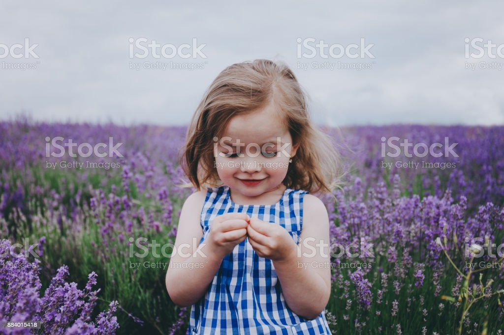 Smiling toddler in a lavender field. stock photo