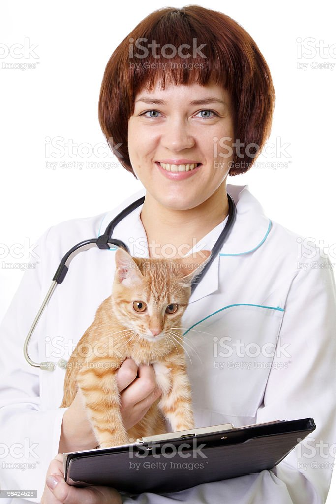 Smiling veterinarian with ginger kitten royalty-free stock photo