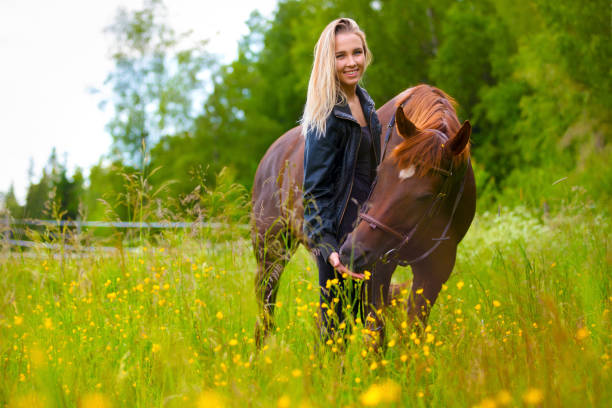 Smiling woman feeding her arabian horse with snacks in the field stock photo