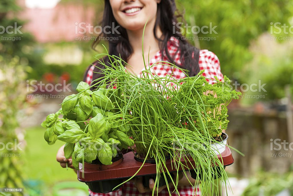 Smiling woman holding tray of green potted plants stock photo