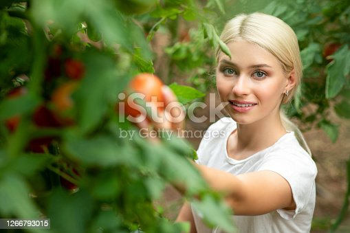 Smiling woman in vegetable garden