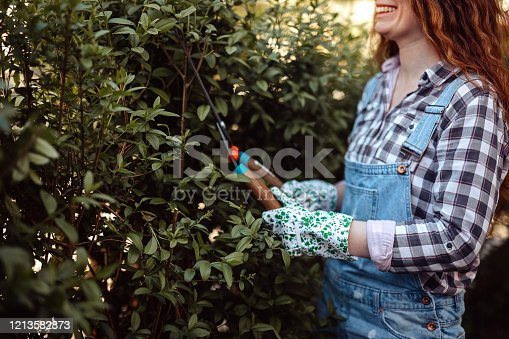 Smiling woman wearing bib overalls trimming hedge with hedge clippers at backyard