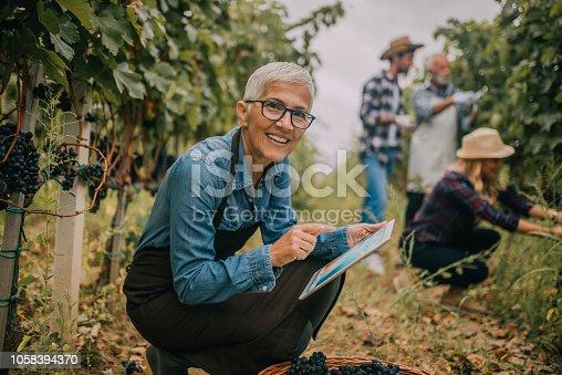 1063236916 istock photo Smiling woman using digital tablet 1058394370