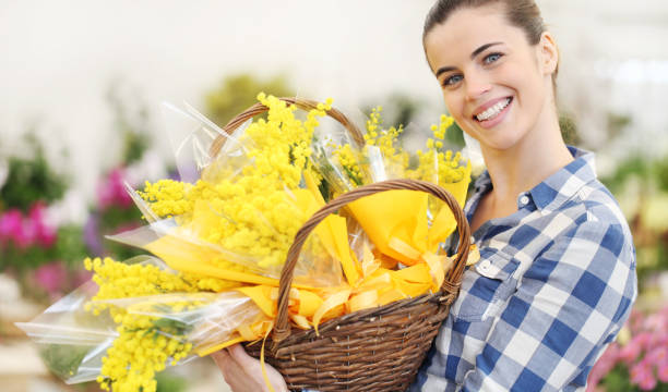smiling woman with basket full of mimosa spring flowers, 8 march women's day concept - immagini mimosa 8 marzo foto e immagini stock