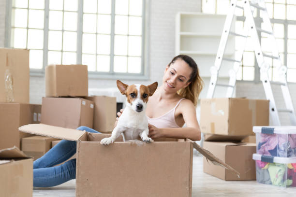 Smiling woman with dog in cardboard box picture id1153800298?b=1&k=6&m=1153800298&s=612x612&w=0&h=g1ihhdtsft8ajarr78sqh alts6qryhlmtt2bpacxpe=