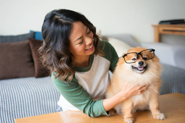 Smiling woman with spitz wearing glasses at home picture id923578492?b=1&k=6&m=923578492&s=612x612&w=0&h=qjspkrbafzjtab3cmheo8n12t29 jtzkxrps18jy8hi=