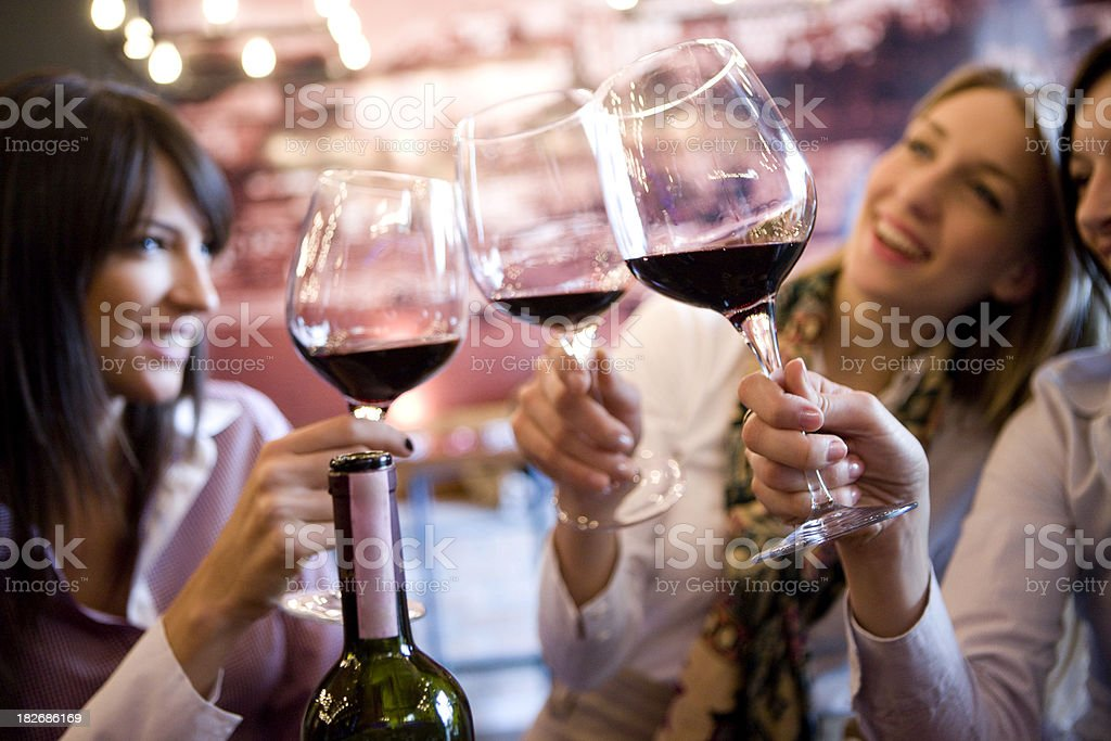 Smiling women making a toast with glasses of wine stock photo