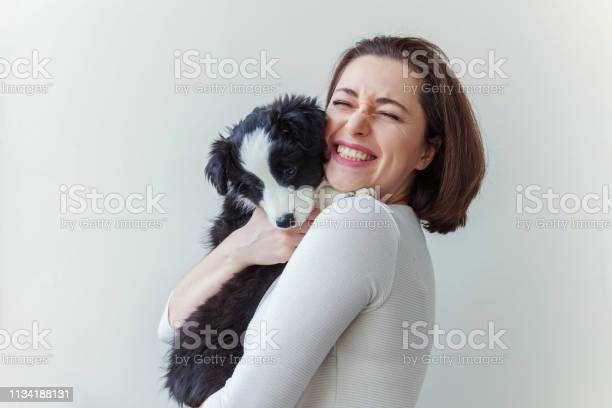 Smiling young attractive woman embracing huging cute puppy dog border picture id1134188131?b=1&k=6&m=1134188131&s=612x612&h=7li3ynigynbq2v8qsa29pa mb 5potfojxdsghs2j1s=