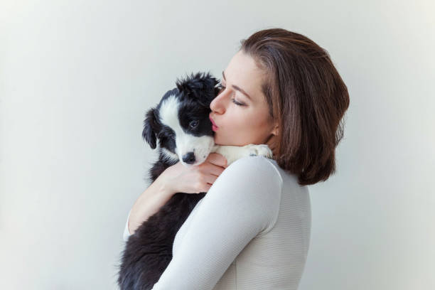 Smiling young attractive woman embracing huging cute puppy dog border picture id1134188169?b=1&k=6&m=1134188169&s=612x612&w=0&h=fa0xugape9ivtywcqco089drmragyvtqq fnhedqdvq=