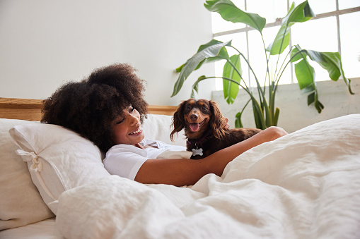 Smiling young African American woman waking up in bed in the morning with her cute little dachshund