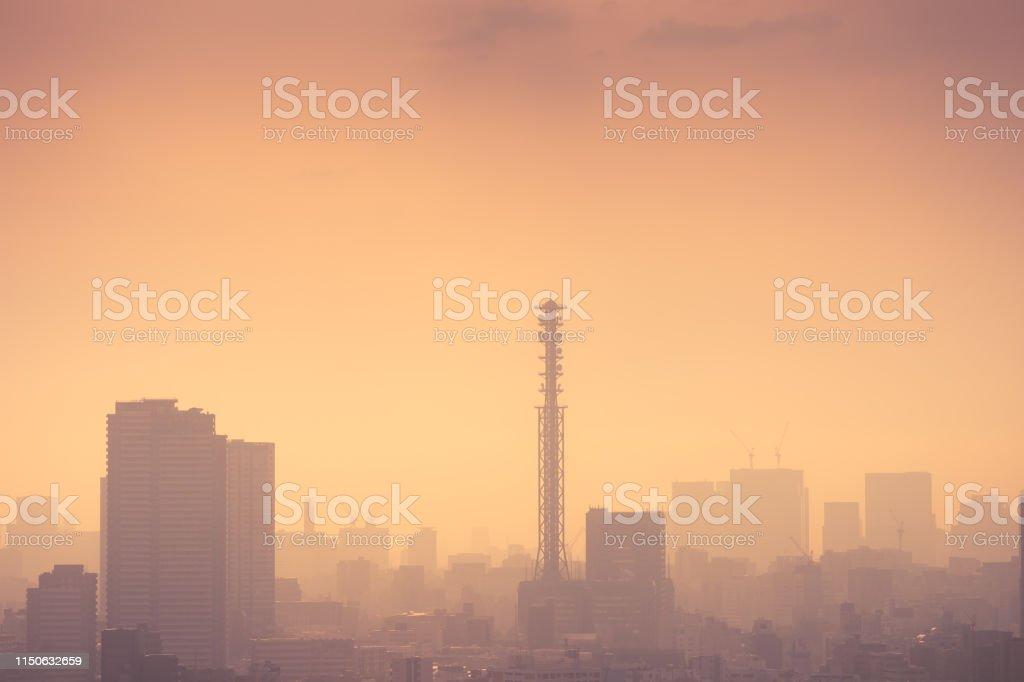 Smog filled Shinjuku Tokyo, Japan skyline - Royalty-free Air Pollution Stock Photo