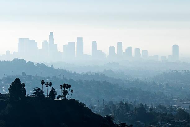 la smoggy fog - smog stockfoto's en -beelden