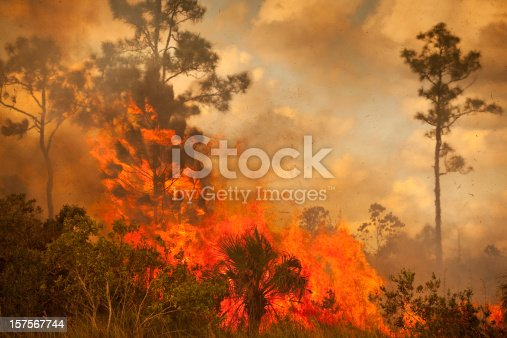 istock Smoke and burnt wilderness emergency 157567744