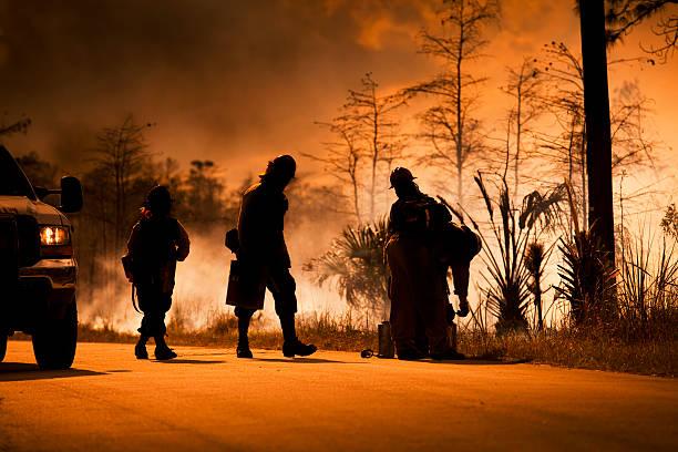 smoke and wilderness emergency - bosbrand stockfoto's en -beelden