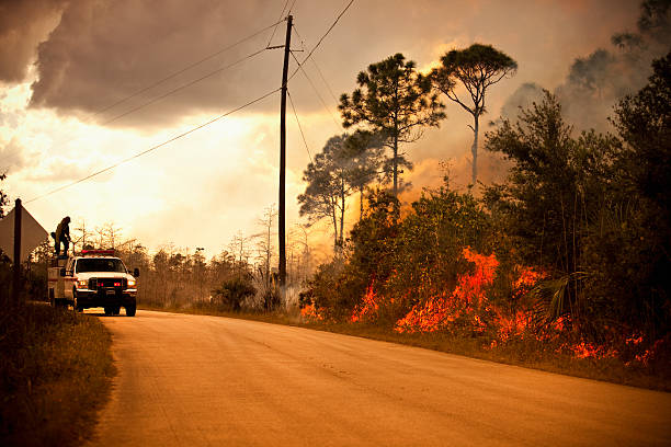 Smoke and wilderness emergency truck  smoke jumper stock pictures, royalty-free photos & images