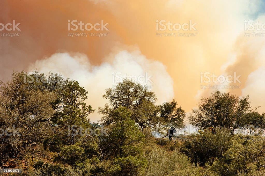 Smoke Filled Sky from Burning Wildfire stock photo