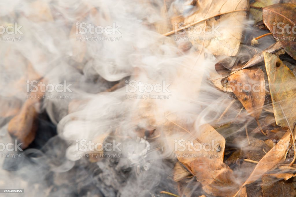 smoke from burning leaves stock photo