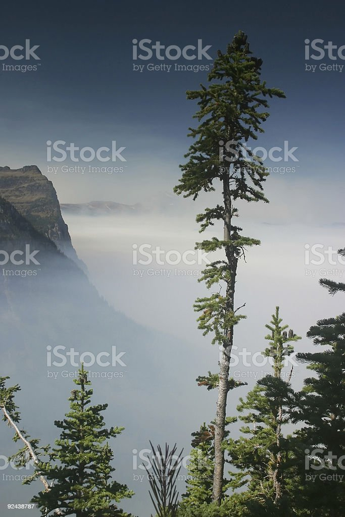 Smoke from Forest Fires royalty-free stock photo