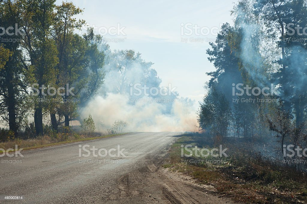 Smoke from the fire at the road stock photo