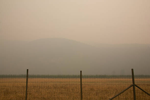 Smoke from the Stickpin forest fire in Washington State stock photo
