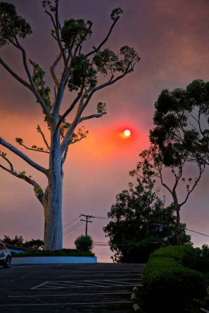 Smoke from the Thomas Fire make the sun red stock photo