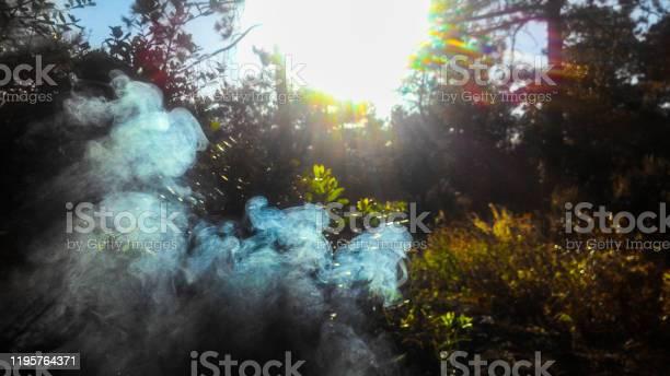 Photo of Smoke, Light, Forest, Turkey, Backgrounds