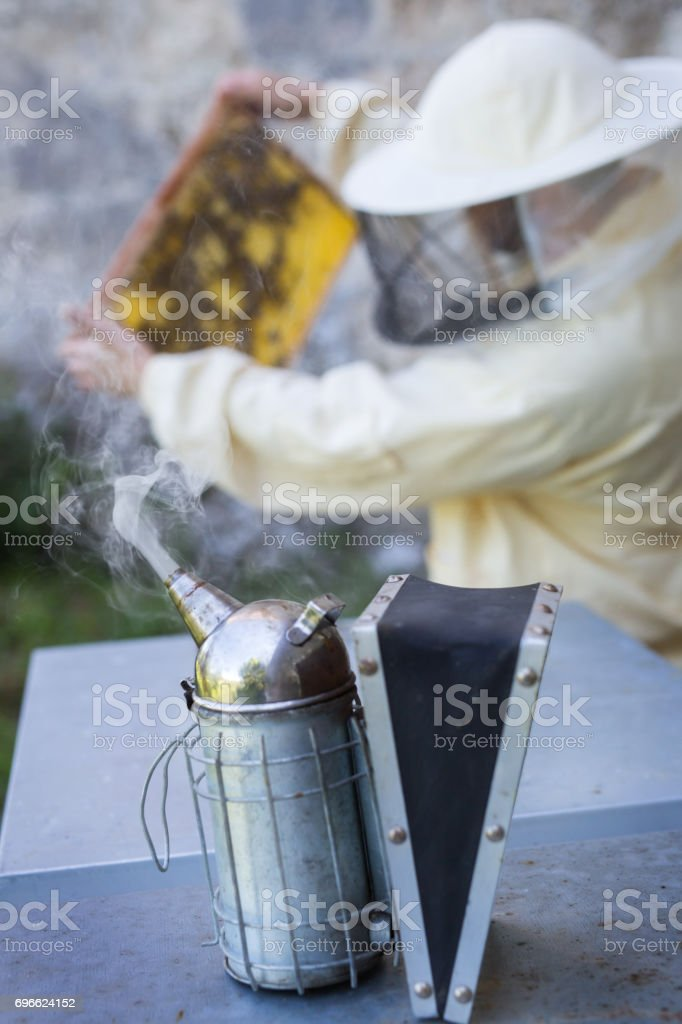 Smoke of a beekeeper stock photo