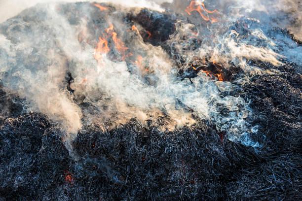smoke - disaster design stock-fotos und bilder