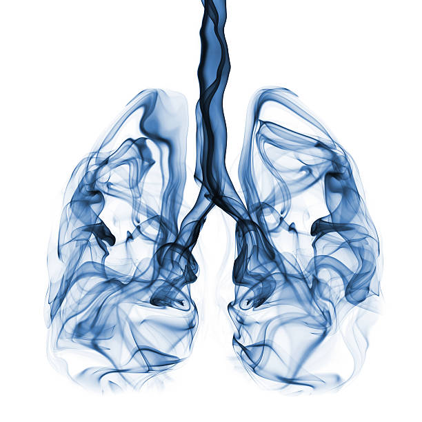 Smoke shaped as lungs. Concept for lung cancer campaign Abstract smoke formation shaped as human lungs. Concept that can be used in lung cancer campaign. lung stock pictures, royalty-free photos & images