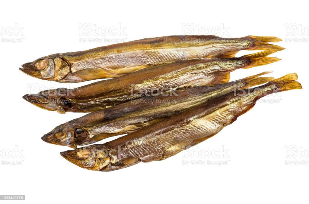 Smoked capelin isolated on white background royalty-free stock photo