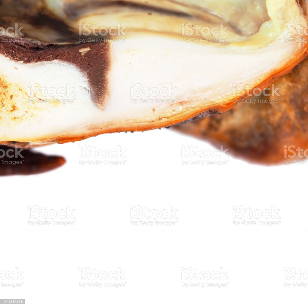 Smoked chicken with a ruddy crust isolated on a white background. Festive dish. Half fried chicken. Appetizing meat product of golden color, white meat, barbecue. Inside view, close-up stock photo