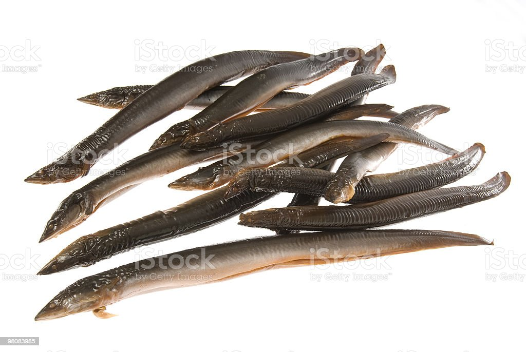 Smoked eels on white royalty-free stock photo
