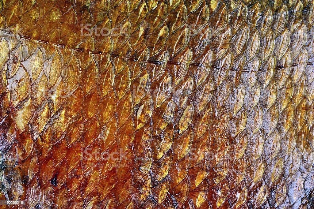 Smoked fish scales stock photo