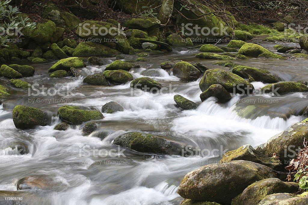 smokey mountain stream stock photo
