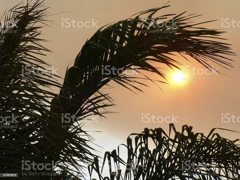 Smokey Sunshine stock photo