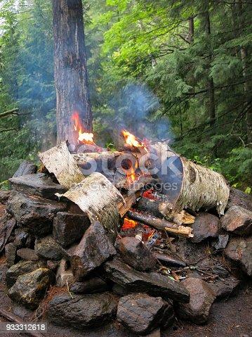 Fire Flames Burning Logs Campfire