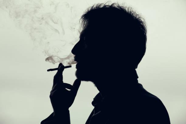 smoking - tamara dragovic stock photos and pictures