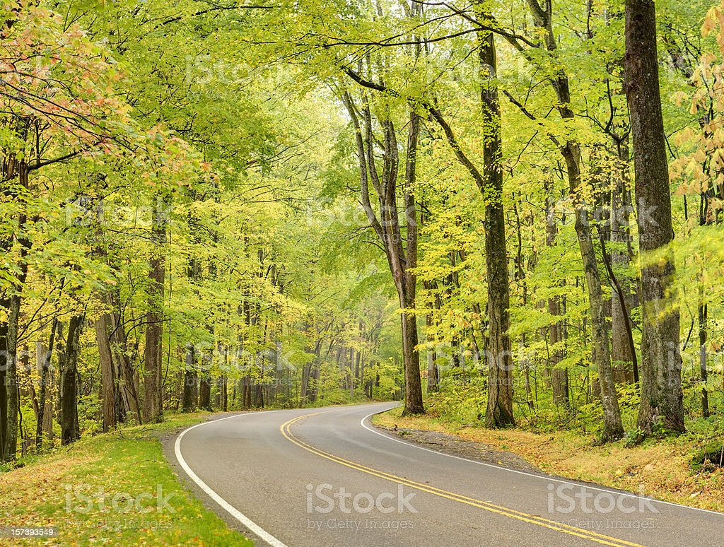 Smoky Mountain Autumn Roads Series royalty-free stock photo